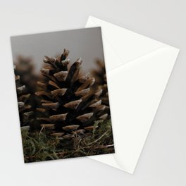 On the trail of the lonesome pine Stationery Cards