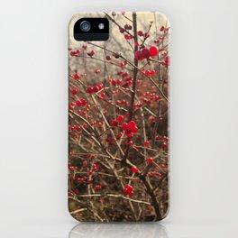Red Winter Berries iPhone Case
