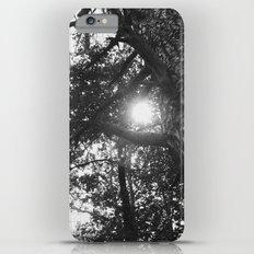 Tree iPhone 6 Plus Slim Case