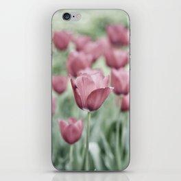 Pink Tulip Field iPhone Skin