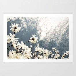 Flowers & Clouds Art Print