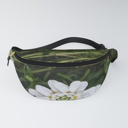 A whiter shade of pale Fanny Pack