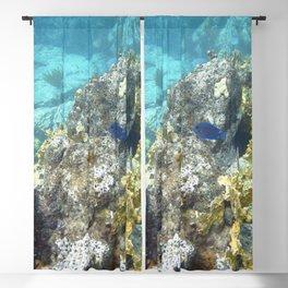 Watercolor Seascape, St John 67, USVI Blackout Curtain