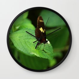 Doris Longwing Wall Clock