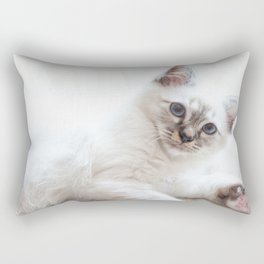 Portrait of white long hair birman cat with blue eyes. Rectangular Pillow