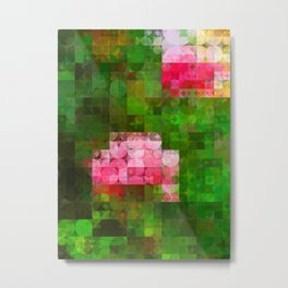 Pink Roses in Anzures 5  Abstract Circles 2 Metal Print