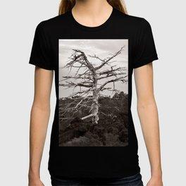 Dead Tree of the Volcano Etna Sicily T-shirt