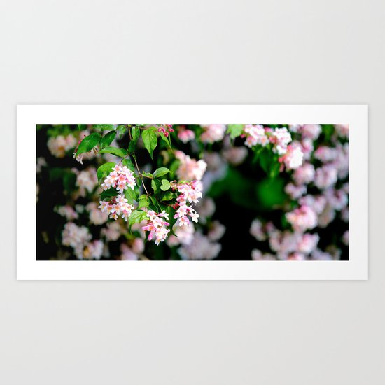 Spring Into Action Art Print