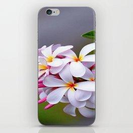 WHITE FRANGIPANI iPhone Skin