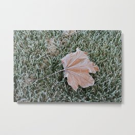 Frosted Maple Metal Print