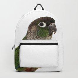 Zeph - Green Cheek Conure Backpack