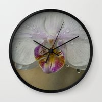 orchid Wall Clocks featuring Orchid by Mary Kilbreath
