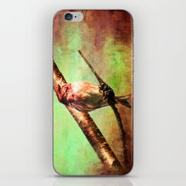 Finch Songbird on Cherry Tree Burl ~ Ginkelmier Inspired iPhone Skin