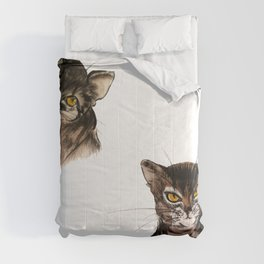 Two Abyssinian cat Comforters