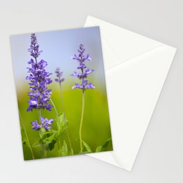 Sage  Stationery Cards
