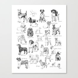 Dog Alphabet Illustration Print Canvas Print