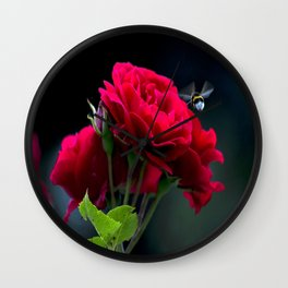 Red Rose Pollination Wall Clock