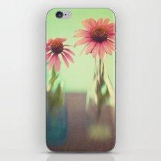 The Coneflowers III iPhone & iPod Skin