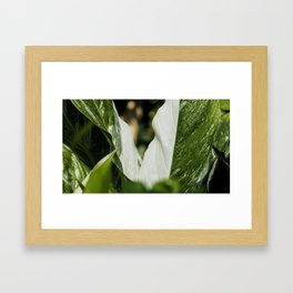 Green and White Leaf Contrast Framed Art Print