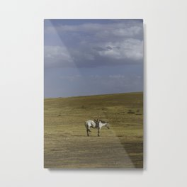 A Nomads Horse Metal Print