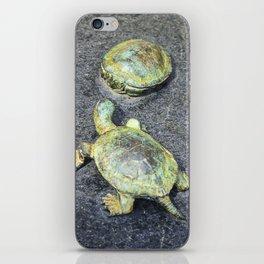 The Turtles iPhone Skin