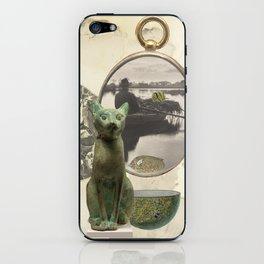 Green Cat iPhone Skin
