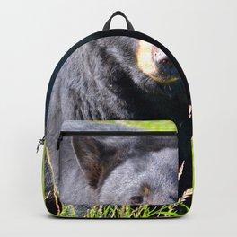 Alaskan Black Bear II Backpack