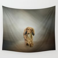 dachshund Wall Tapestries featuring It's Showtime Baby - Dachshund by Jai Johnson