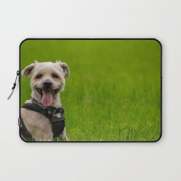 Shorkie dog with harness on Laptop Sleeve