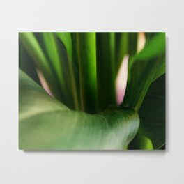 Still Movement - Stems Up Close - Leaves - Green Metal Print