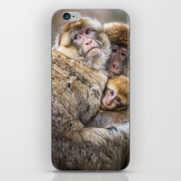 Cuddling Family iPhone Skin