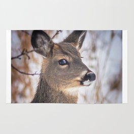 January Whitetail Rug