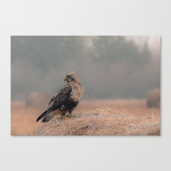 Feathered Wanderer Canvas Print