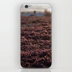 Field cover iPhone & iPod Skin