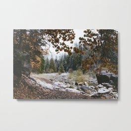 Flat Rock, Wawona Metal Print