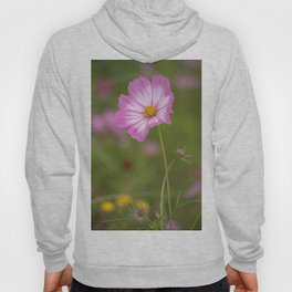 Pink and White Cosmos Hoody