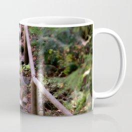 Old Wet Stone Steps Coffee Mug