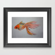 Goldfish Pond (close up #9) Framed Art Print