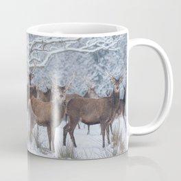 Red deers  from wintry Killarney National Park Coffee Mug