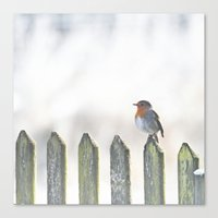 robin Canvas Prints featuring Robin by SUNLIGHT STUDIOS  Monika Strigel