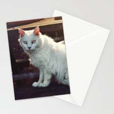 Ghost Cat Stationery Cards