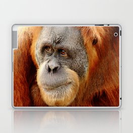 Observant Orangutan Laptop & iPad Skin