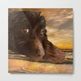 Dog and Sunset Metal Print