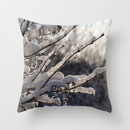 Pale winter light Throw Pillow