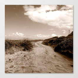 The path less traveled. Canvas Print
