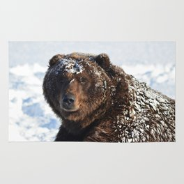 Alaskan Grizzly in Snow Rug