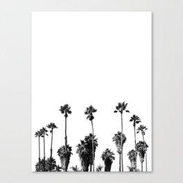 101 Palm Trees Canvas Print