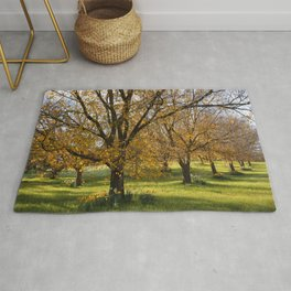 Autumn in the Orchard Rug