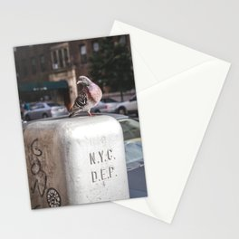 NYC Pigeon Stationery Cards