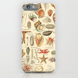 Seashell Diagram // Mollusques by Adolphe Millot XL 19th Century Science Textbook Artwork iPhone Case